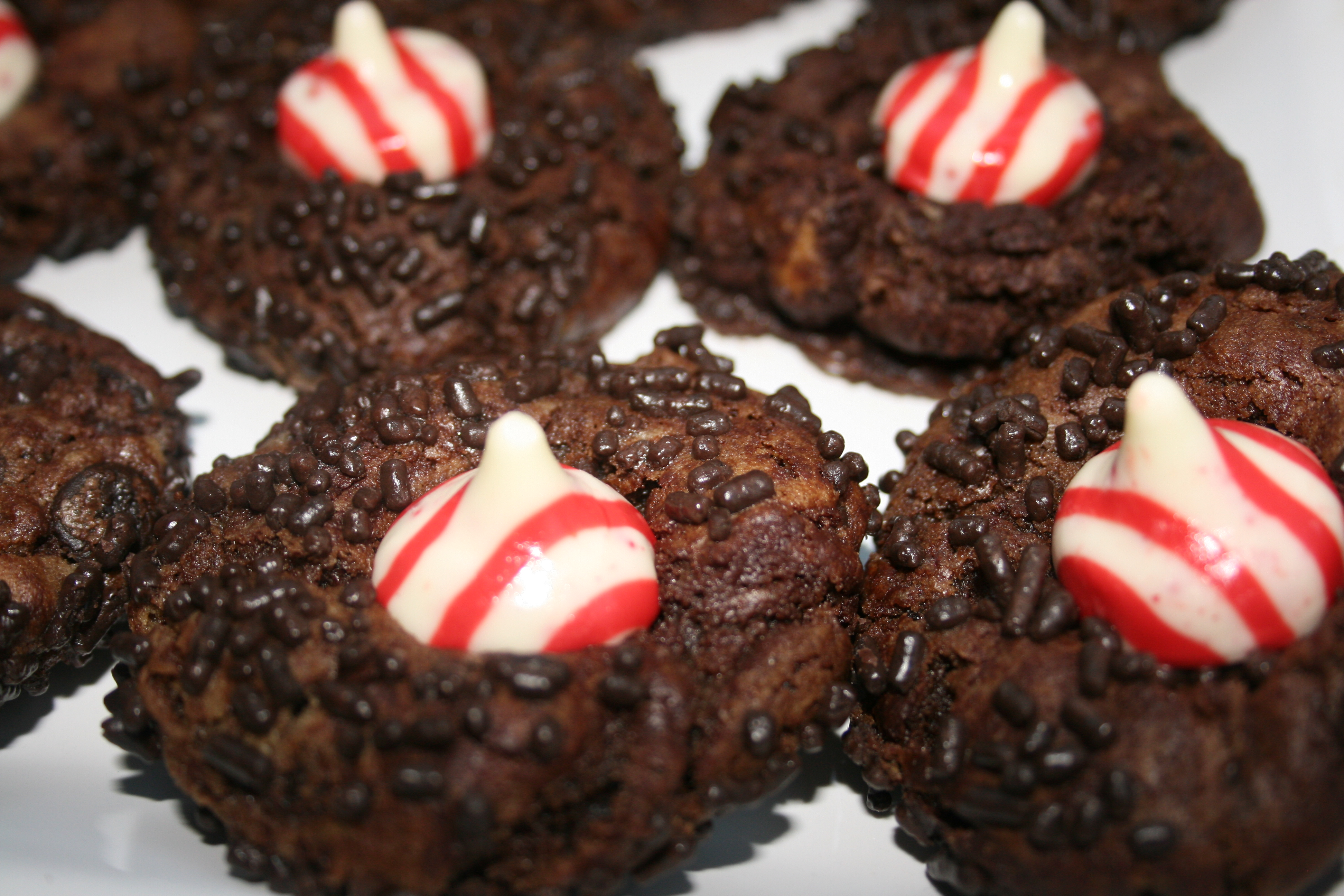 Pillsbury Christmas Cookies.Christmas Cookie Winner Double Chocolate Chip Peppermint